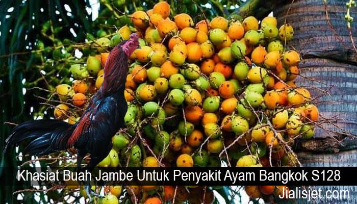 Khasiat Buah Jambe Untuk Penyakit Ayam Bangkok S128