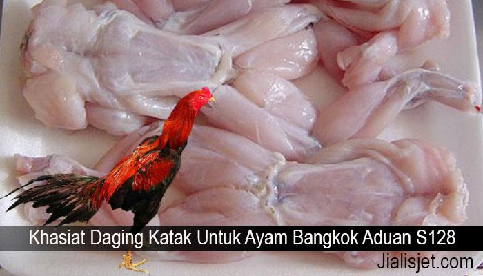 Khasiat Daging Katak Untuk Ayam Bangkok Aduan S128