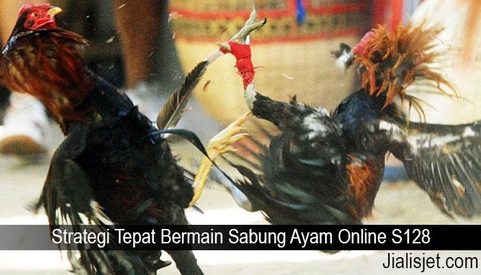 Strategi Tepat Bermain Sabung Ayam Online S128